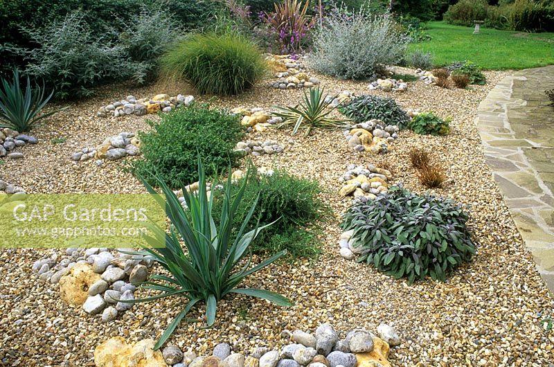 Gap Gardens Gravel Garden With Drought Tolerant Plants