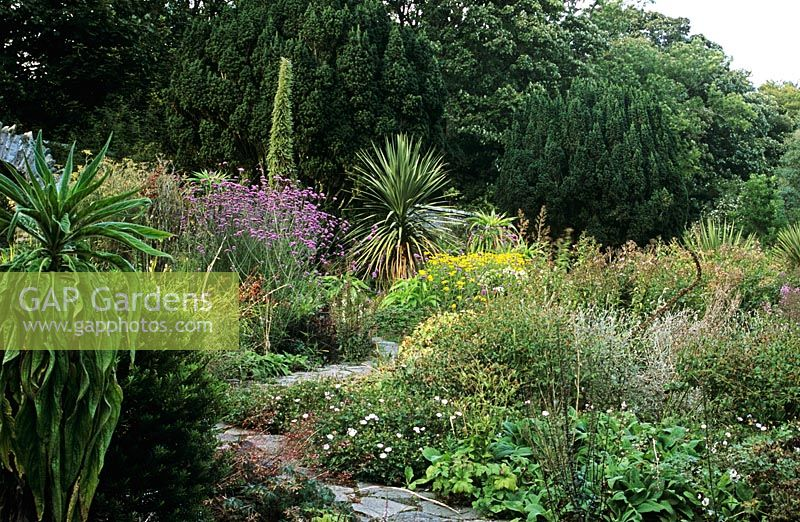 GAP Gardens - Yin and Yang garden with crazy paving path, Verbena ...