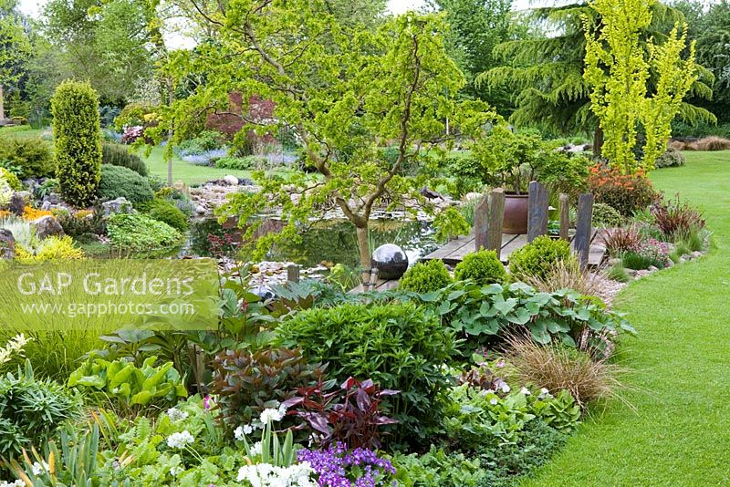 Planting Around Pond In May Central Tree Is Robinia Pseudoacacia Twisty Baby Syn