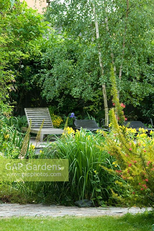 Wooden and medtal sun chairs, a multi-stem Betula pendula, syn. B. alba, Mimulus luteus and a Carex by a Natural Swimming Pond in Cambridge
