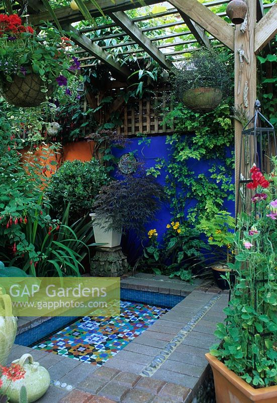 Gap gardens moroccan style garden with blue painted wall for Knebel design pool ug