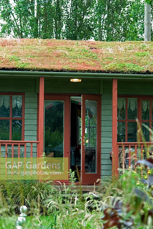 Living roof with sedums on the roof of the garden pavilion, June