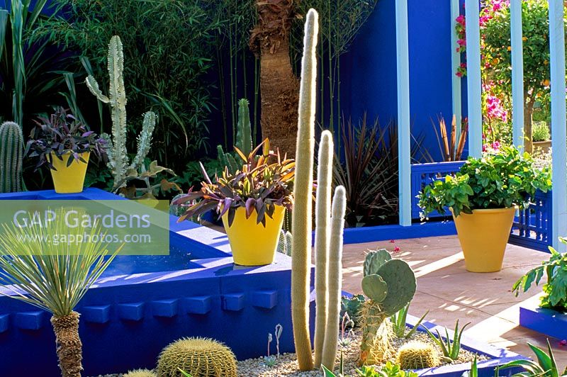 Courtyard Surrounded By Cacti And Yellow Terracotta Pots In The Moroccan  Style Yves St. Laurent