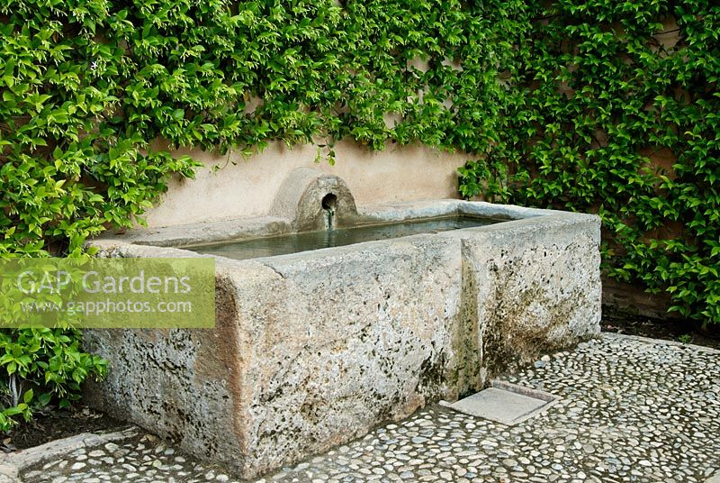 Old Stone Water Trough And Fountain Surrounded By Trachelospermum  Jasminoides In The Generalife Gardens   Gardens