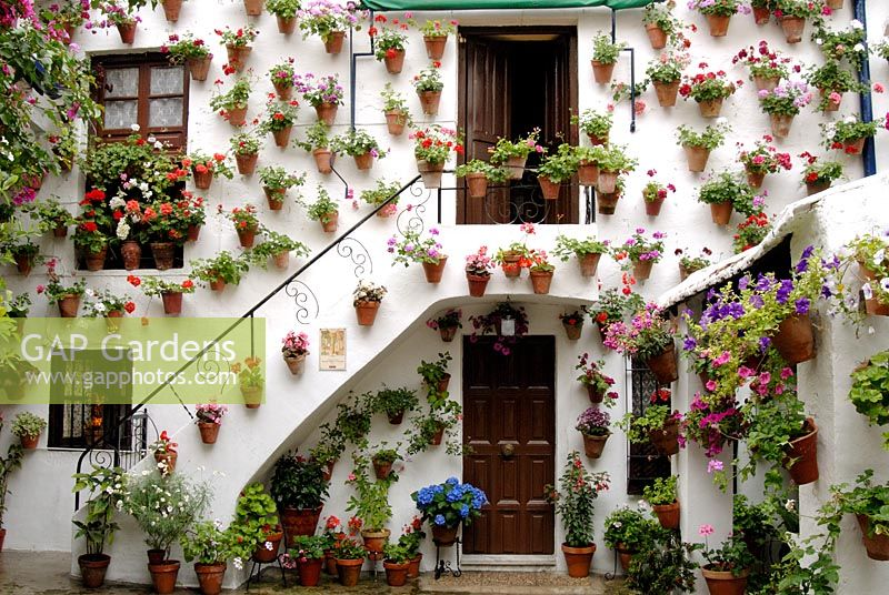 Traditional Spanish Courtyard Garden With Pelargoniums In Terracotta Pots Hanging On Whitewashed Walls The Cordoba