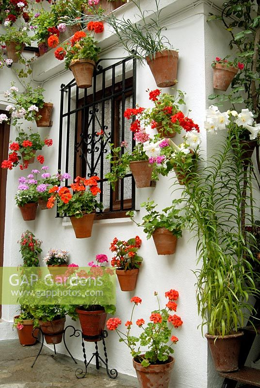 Gap gardens traditional spanish courtyard garden with for Spanish garden designs