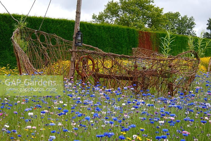 A Meadow Of Flowering Annuals With A Pirate Ship Created From Woven Willow  In The Pirates