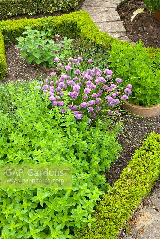 The Parterre Vegetable Garden