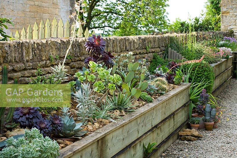 GAP Gardens Raised beds against stone wall Bourton
