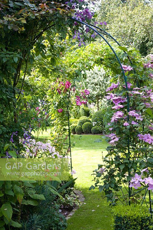 Gap gardens metal arch with pink climbing flowers in summer garden metal arch with pink climbing flowers in summer garden mightylinksfo