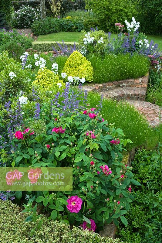 Informal Planting In A Herb Garden With