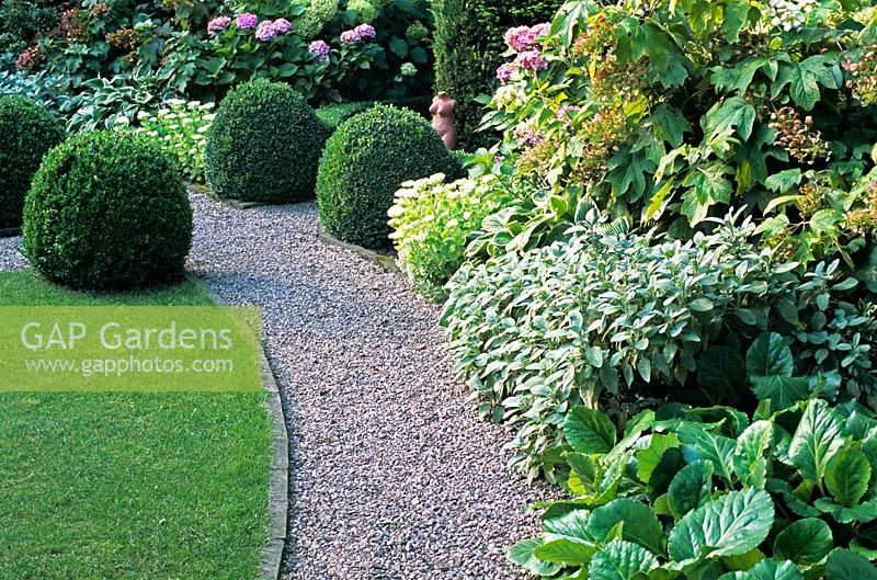 Nice Curved Gravel Path In Garden With Buxus Balls In Small Garden