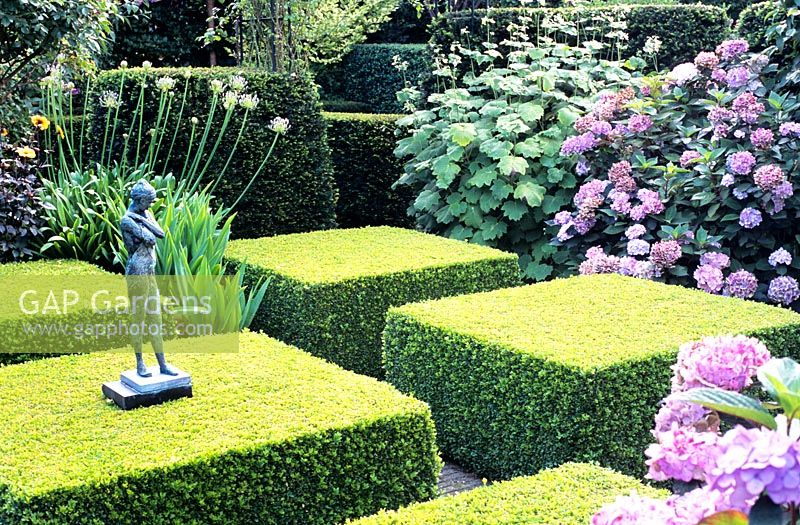 Formal Garden With Clipped Buxus Shapes And Small Figurative Statue