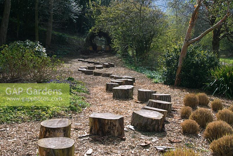 gap gardens stepping 39 stones 39 made from tree trunks