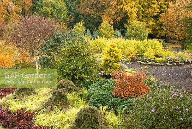 GAP Gardens Autumn view of The Winter Garden Bressingham