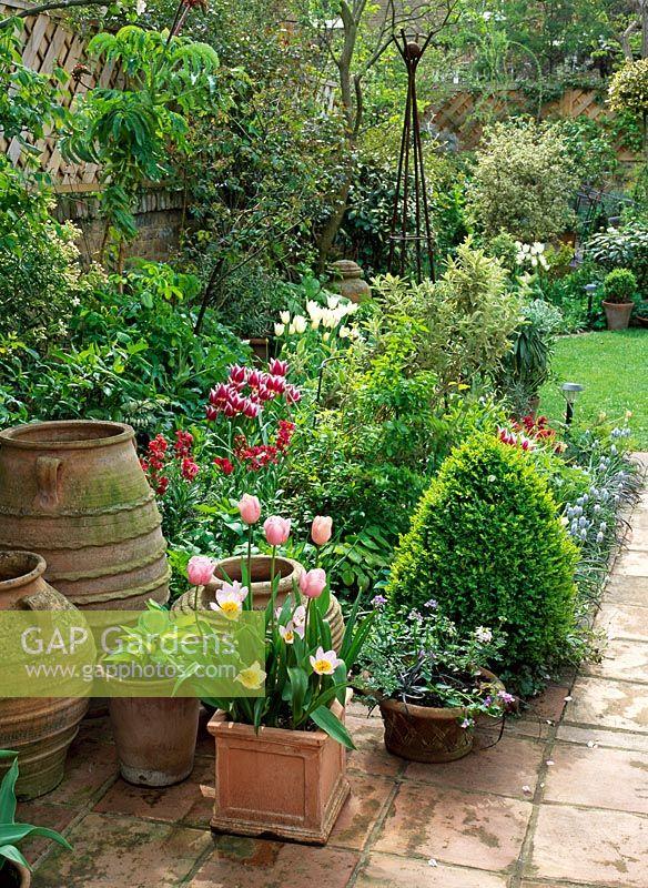 Small Urban Garden In Spring