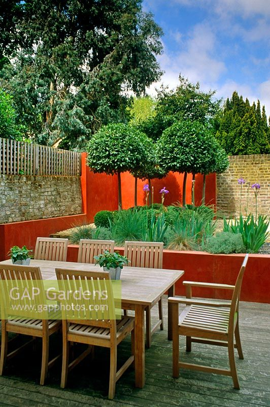 Small urban garden with raised beds, Laurus nobilis standards and dining area - Twickenham, Middlesex