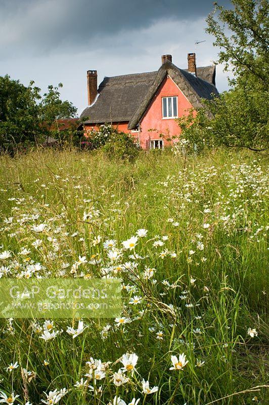 GAP Gardens Thatched pink cottage with wildflower garden