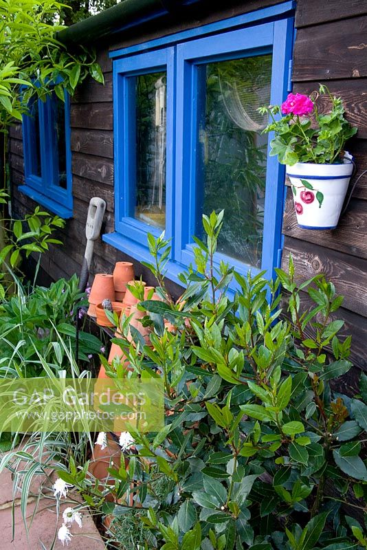Wooden shed with blue painted windows, ceramic hanging pot with geranium and neatly stacked terracotta pots