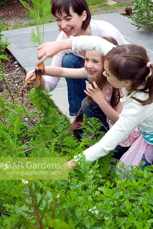 Girls helping Sue in vegetable patch