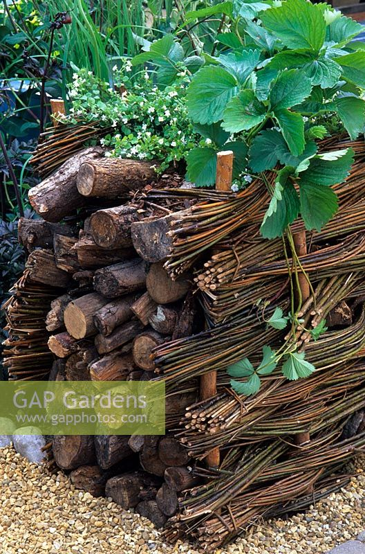Raised bed edged with low willow hurdles and logs creating a wildlife haven in 'The Beehive' garden, RHS Hampton Court Flower Show