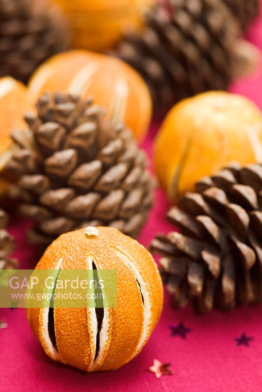 Dried oranges and fir cones as Christmas decorations