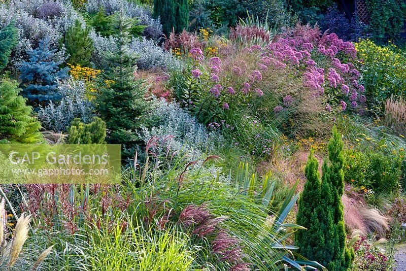 GAP Gardens - Prairie garden at Honeybrook House Cottage ...