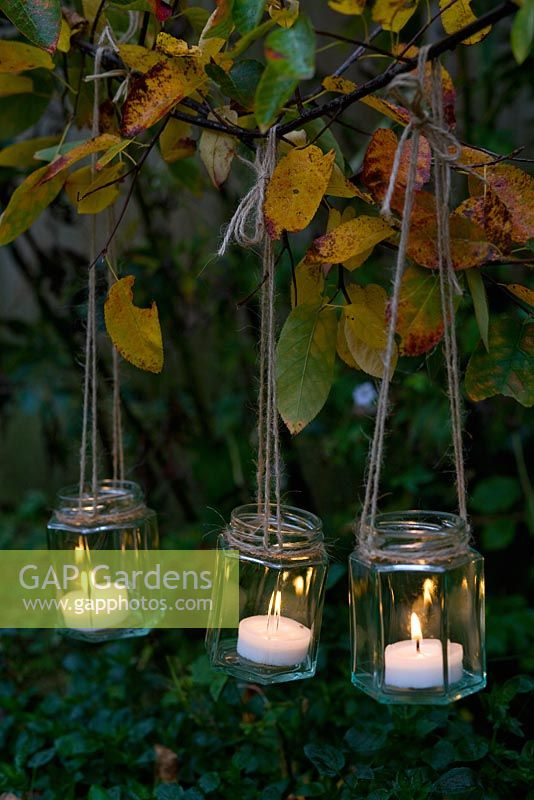 GAP Gardens - Tealights in jam jars with string hanging from branches - Image No: 0122613 ...
