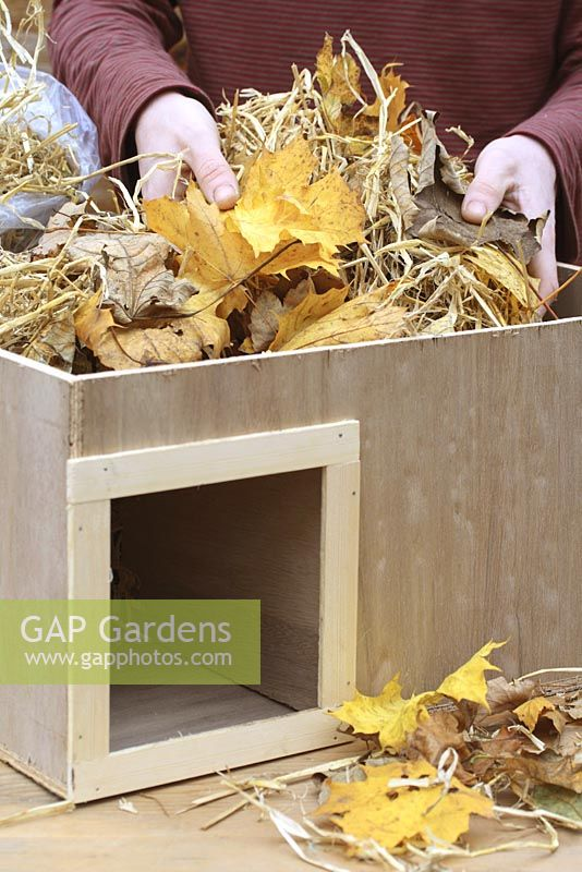 Step by step 6 of making a hedgehog house - Filling wooden box with straw and dry leaves