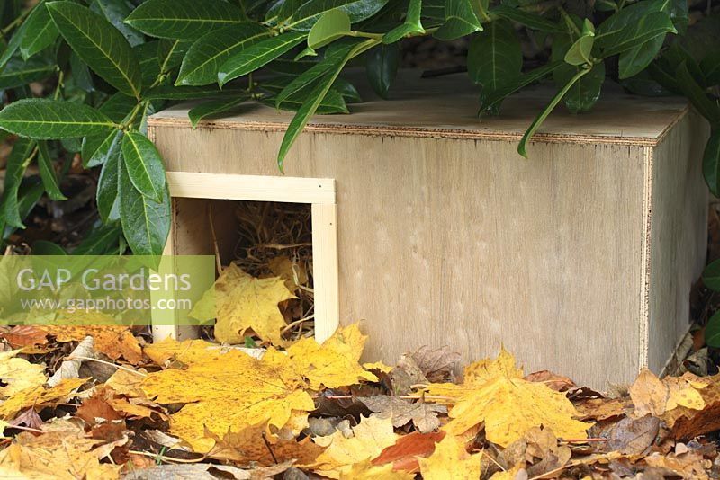 Step by step 10 of making a hedgehog house - The finished wooden box in sheltered garden spot beneath shrubs