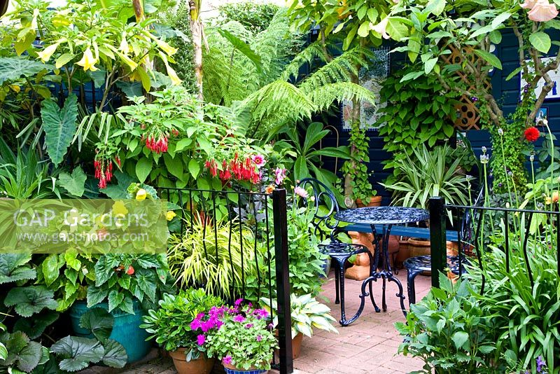 Gap Gardens Terrace In Small Tropical Moroccan Style Garden With