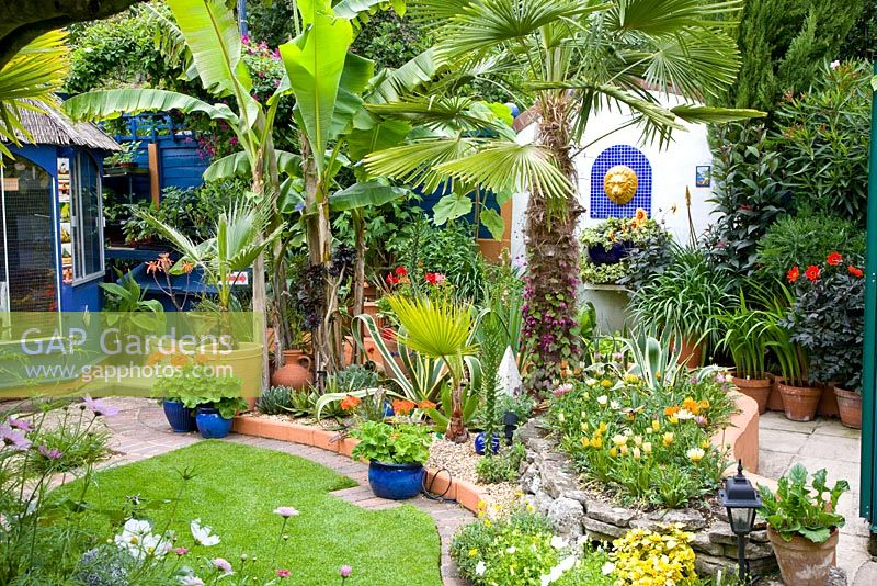 Gap gardens small moroccan style tropical garden with trachycarpus fortunei and agave in mixed - Mixed style gardens ...