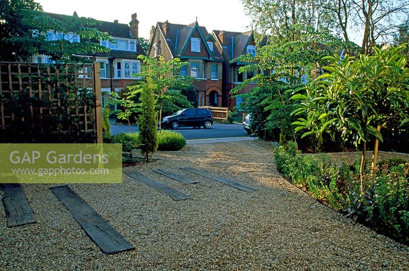 GAP Gardens  Urban front garden and driveway with tree on near right