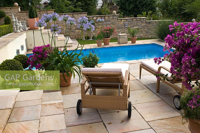 Gap Gardens Swimming Pool Terrasse With Containers Of Agapanthus