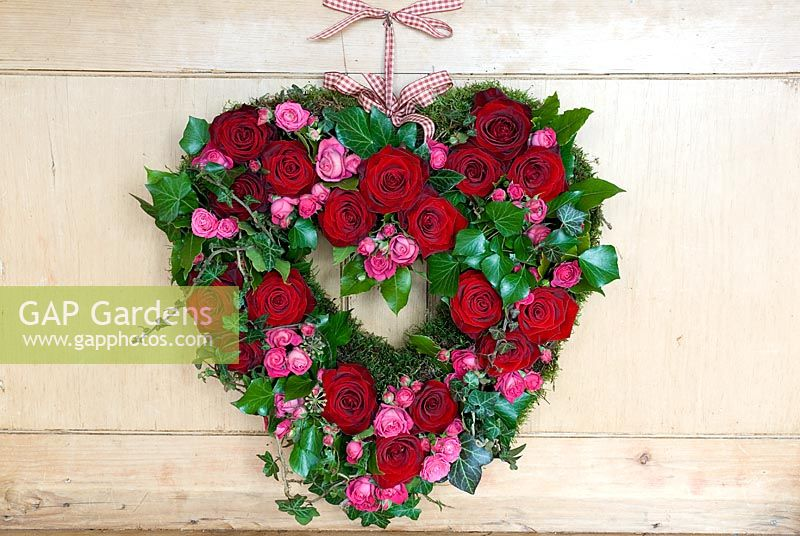 Valentine's wreath made from pink and red roses with ivy