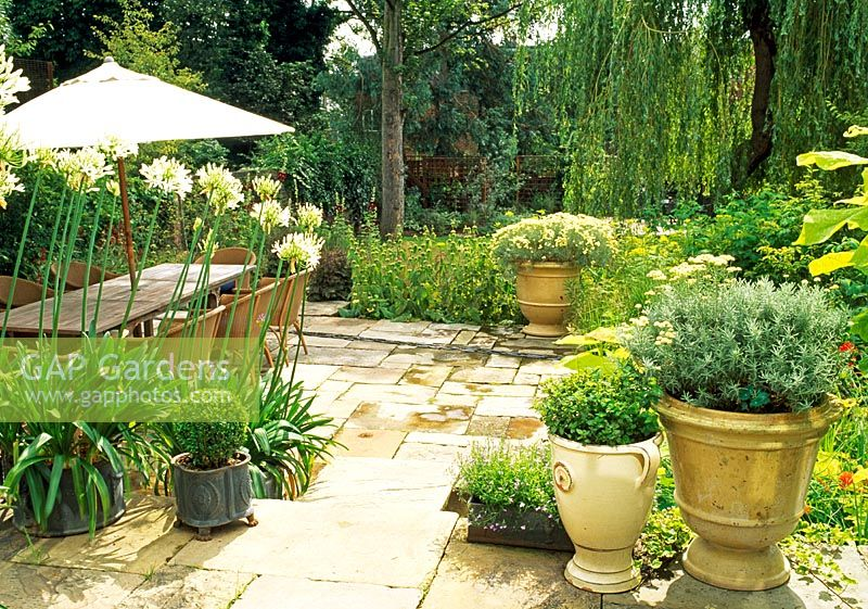 Gap Gardens London Garden Stone Paved Terrace With