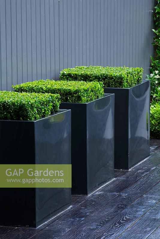 Gap Gardens Small Contemporary Garden With Metal Square