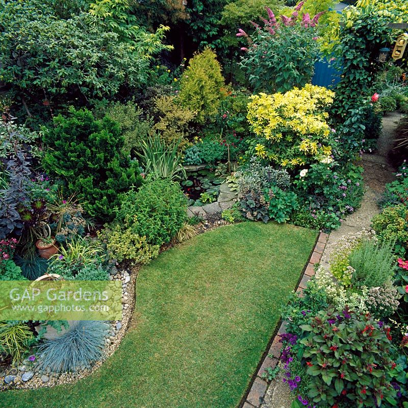 Overview of town garden with lawn and mixed planting - Barnet, London