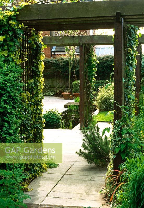Staged Wooden Pergolas Divide The Space