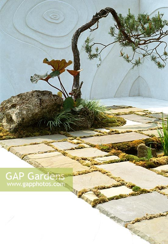 GAP Gardens - Modern classic, small Japanese garden with ...