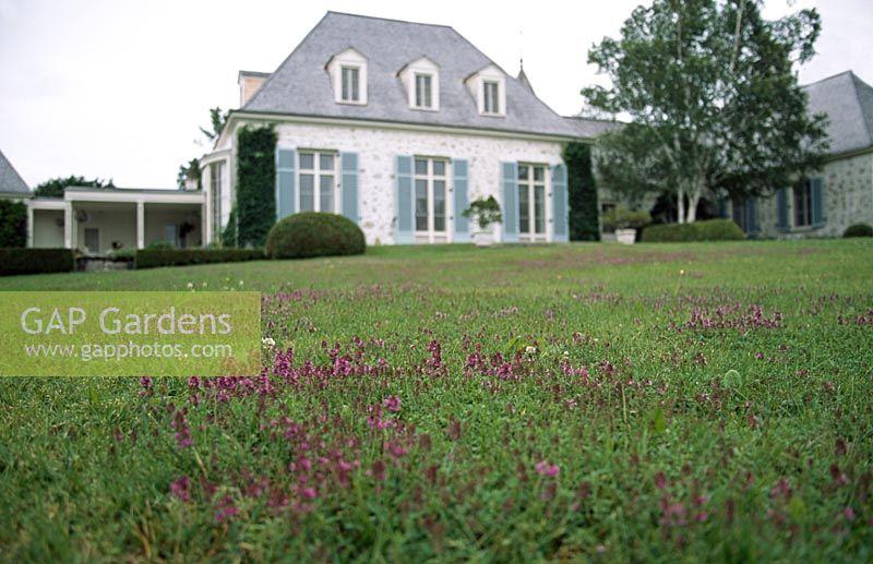 Gap gardens thyme lawn les jardins de quatre vents in for Jardin 4 vents