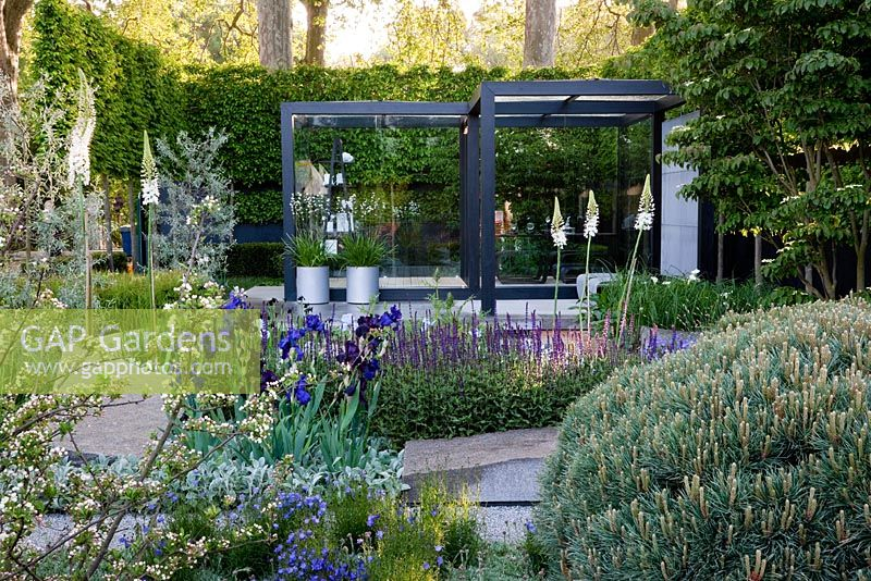 Gap Gardens The Daily Telegraph Garden Sponsored By The
