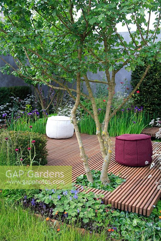 Nature Ascending Garden - Gold medal winner for Urban Garden at RHS Chelsea Flower Show 2009