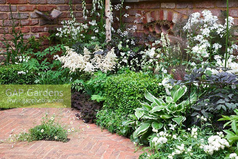 GAP Gardens - White planting scheme in the Jacob\'s Ladder Garden ...