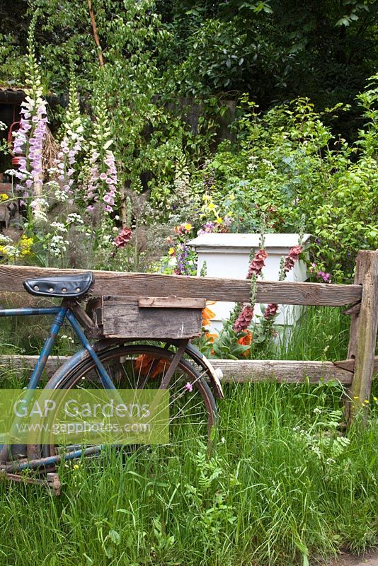 Old bicycle by fence with beehive and cottage garden flowers - The Fenland Alchemist Garden, sponsored by Giles Landscapes - Gold medal winner for Best Courtyard Garden at RHS Chelsea Flower Show 2009