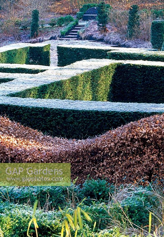 View over the Yew Hedging from within the Grasses Parterre, Beech 'wavy' hedge in foreground and part of the Wild Garden beyond - Veddw House Garden, February