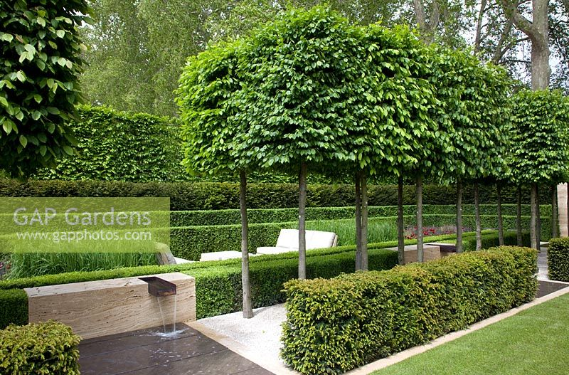 Gap gardens formal hornbeams the laurent perrier garden sponsored by laurent perrier gold - Chelsea flower show gold medal winners ...