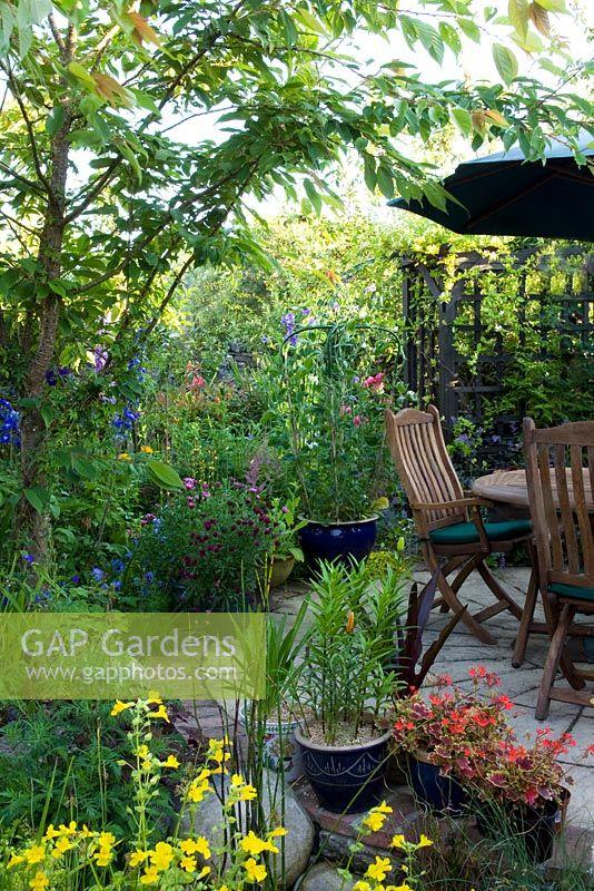 GAP Gardens - Rosemary Westlake Garden - Feature by Lynn Keddie ...