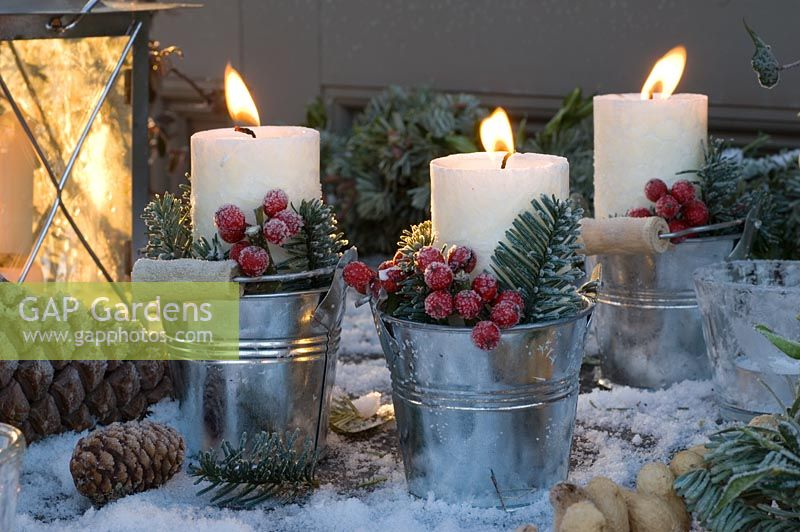 Lit candles in metal holders with Ilex and Abies nobilis foliage