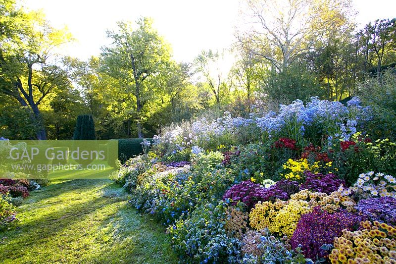 GAP Gardens - Dumbarton Oaks - Feature by Claire Takacs - GAP ...